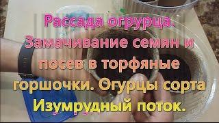 видео Торфяные горшочки