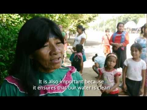 Alianza Arkana - Amazon Calling: Part 1