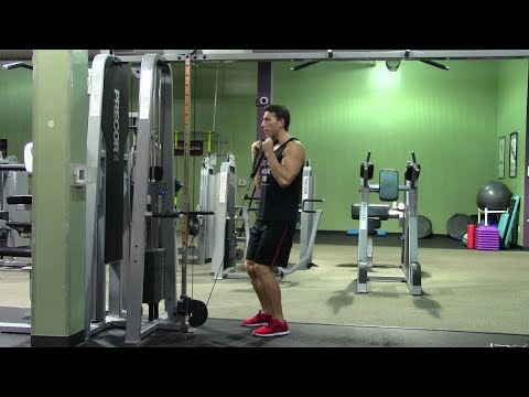 beginner arms workout in the gym  hasfit easy arm