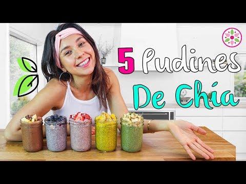 5 PUDINES DE CHÍA PARA DESAYUNO! Fácil y Vegano😋Rawvana