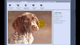 Урок по работе с онлайн редактором фотографий Fanstudio