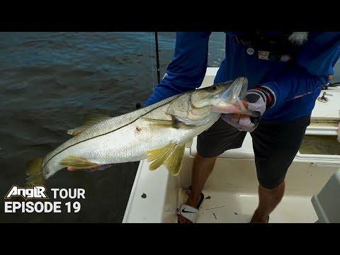 Bonito, Mackerel, Snook Fishing SMASH Fest! Fishing Jupiter Inlet Florida