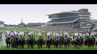 Greatwood Hurdle 2014 Preview