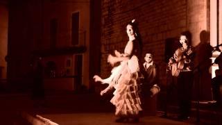 los flamenco rumba saint marcel les sauzet