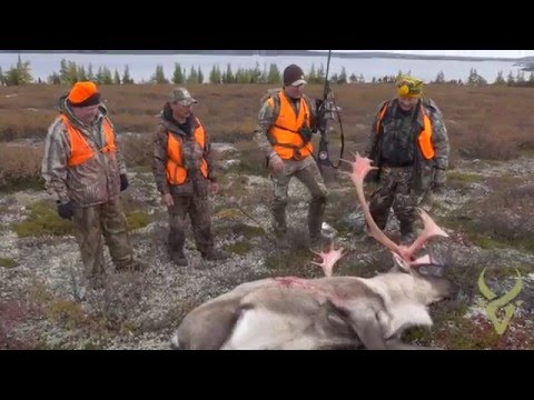 The 3 Minute Adventure - Quebec Caribou Double