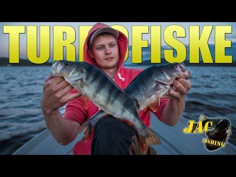 Turbofiske i Hälsingland - JAC is back!