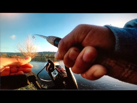 Trout Fishing On Martin Luther King JR Quarry Lake Fremont Ca