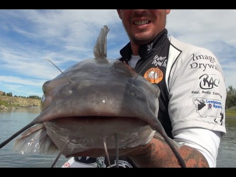 Big Sky Outdoors - Catfishing on the Yellowstone River