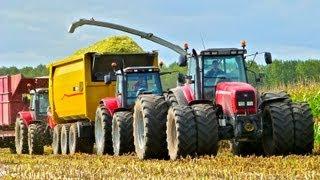 Mais hakselen Van Bakel Dairy 2012 - Jaguar 980, MF 8690, MF 7495, USA Equipment