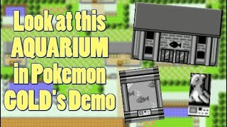 Pokemon Gold + Silver Originally Had an Aquarium and Safarizone
