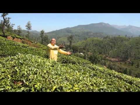Nitthiya Nitthiyamaai - JJG 32 DVD -  Tamil Christian song