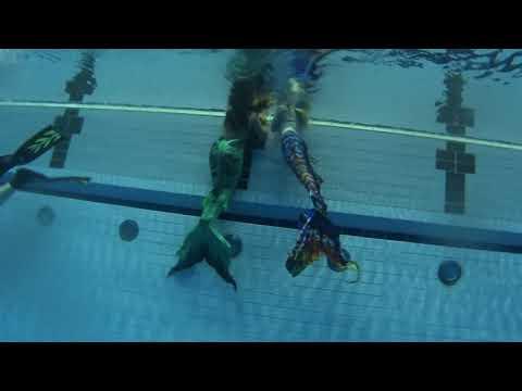 Diveworld Videos   September Club Night 2019