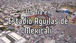 Los Águilas de Mexicali y su nido fronterizo
