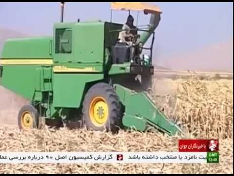 Iran Kermanshah province, Mechanized Corn harvest برداشت مكانيزه ذرت استان كرمانشاه ايران
