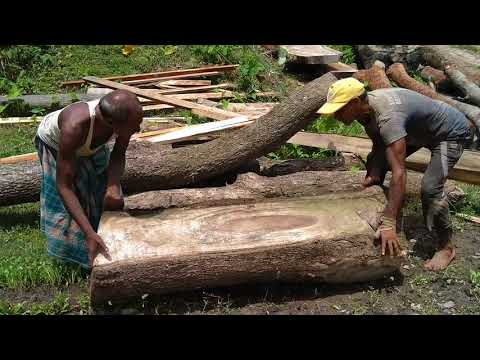 5 Strong Hand Only To Lift the Heavy Weighted Wood to Cut in Saw Mill of the World/Dangerous Work
