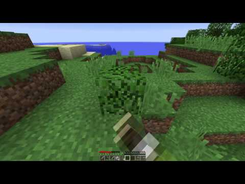 Minecraft / S2E1 / Getting Started Again