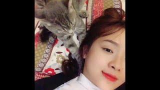 Cat Gives Massages    ViralHog