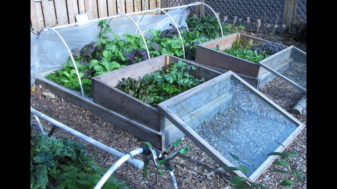 fall winter garden cost