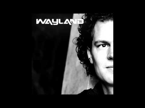 Lunde Bros & Robin Thicke -  Can you feel the Blurred lines (Wayland Mash up)