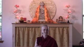 This Week on Bodhisattva