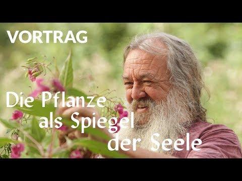 Die Pflanze als Spiegel der Seele (Vortrag)