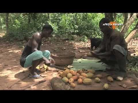 www.africareport.com video - Organic Cocoa Farmers, Oxfam-Novib, Ghana