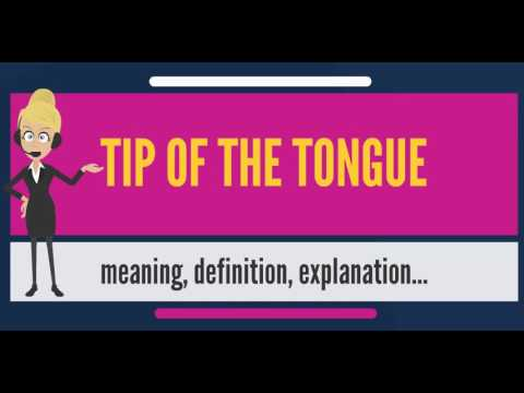 What is TIP OF THE TONGUE? What does TIP OF THE TONGUE mean? TIP OF THE TONGUE meaning