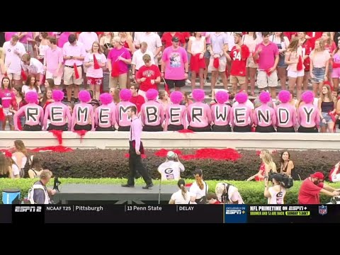 Dan's Football Page - Georgia Bulldog Fans PINK OUT Sanford Stadium