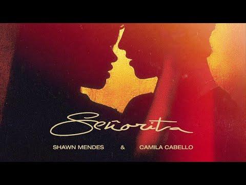 Shawn Mendes, Camila Cabello - Señorita (Official Studio Acapella)