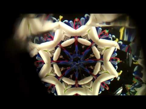Polyangular kaleidoscope images - bushido steht auf megan fox images
