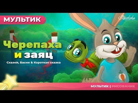 Мультфильм черепаха и заяц на русском