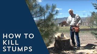 How to Kill Stumps