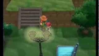 Pokemon X/Y - Sun Stone Location #02