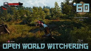 [60]Open World Witchering (Let's Play The Witcher 3 Part 60)