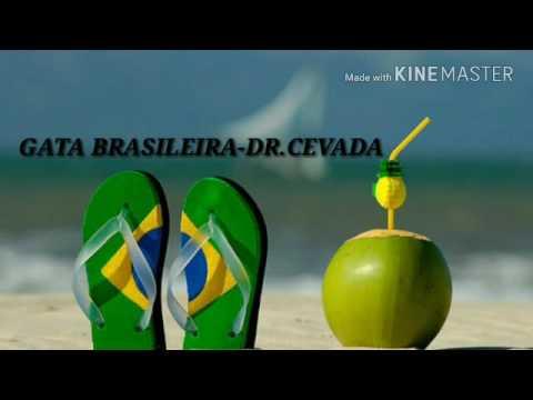 GATA BRASILEIRA - DR.CEVADA(RETRO)