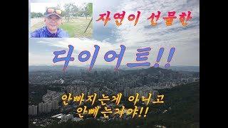 신불자/서대문구 안산 / 공짜다이어트 /1달 10kg감…