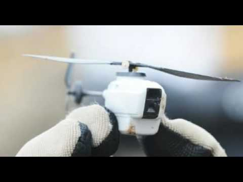 "Insect Sized ""Dragonfly Drones"" to be Used For Urban Warfare!"