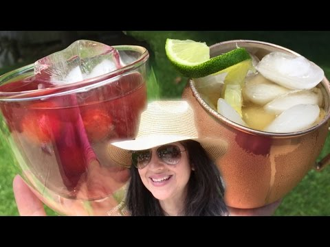 Summer Vodka Sips -The Transfusion & The Moscow Mule  // Tasty Bit 88