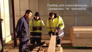 TimberGrade2