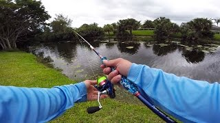 the most random pond bass fishing video you will ever watch