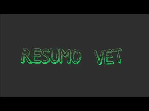 diabetes-mellitus---resumo-vet