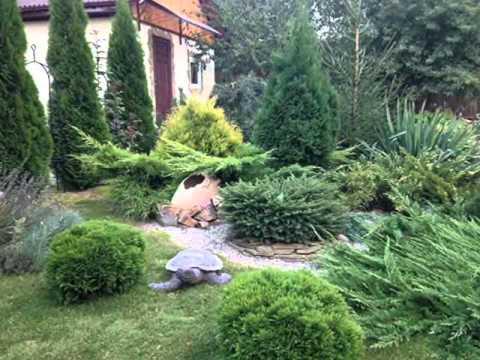 Озеленение участка.  Очаровательные садовые композиции