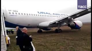 Самолет  Уральских авиалиний  выкатился за пределы ВПП в аэропорту Симферополя