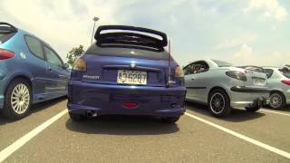 Peugeot 206 Club 2013 Summer Meeting