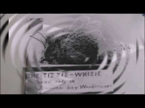"OLD BLACK & WHITE FILM - ""The Tizzie-Whizie"" - 1900"
