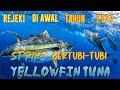 - REJEKI DI AWAL TAHUN 2021| STRIKE BERTUBI-TUBI IKAN TUNA SIRIP KUNING| HANDLINE YELLOWFIN TUNA