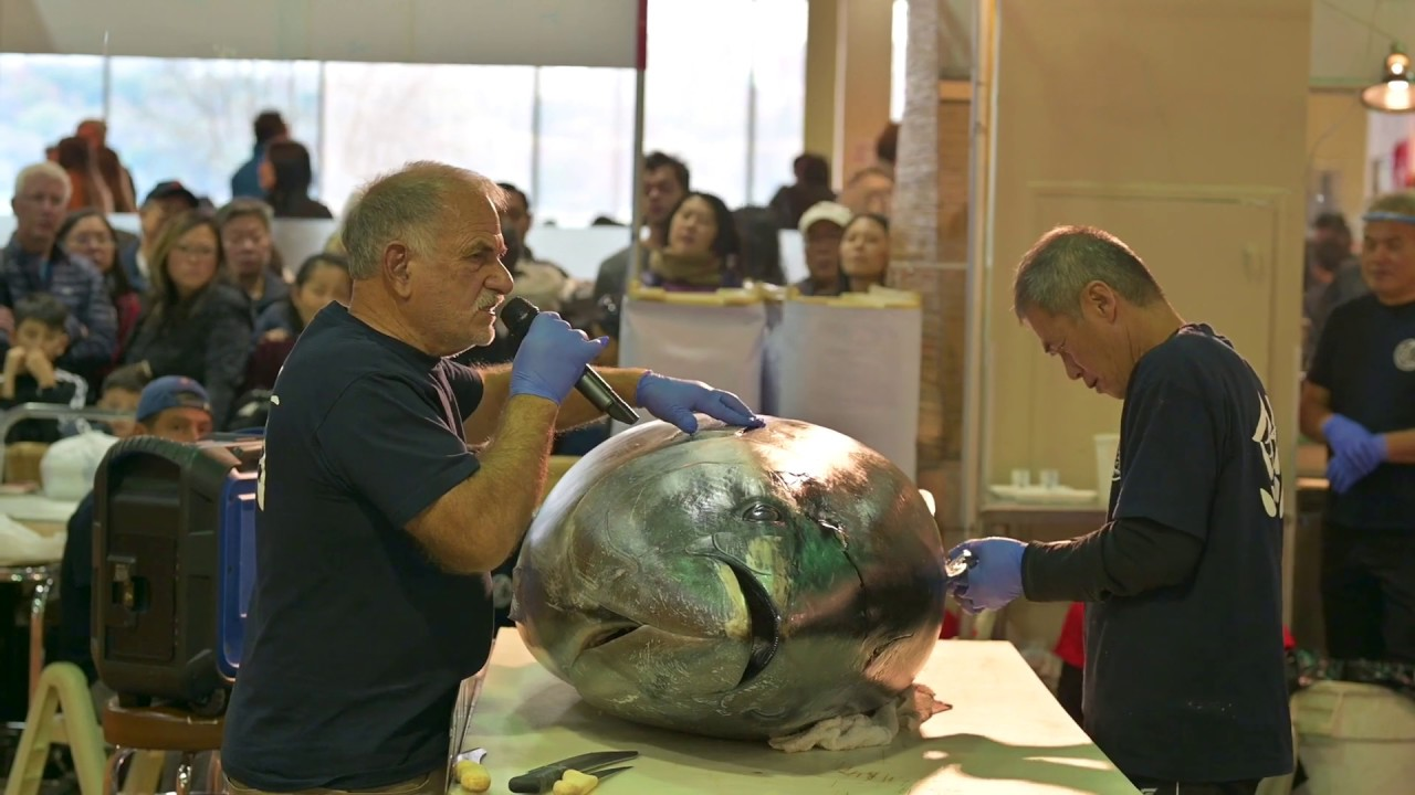 Long $10,000 Knife Cuts 600 lb Sustainable Bluefin Tuna 2019