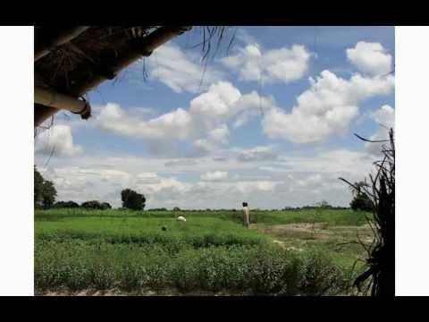 Prashanti Herb Journal: Sustainability and Dana (Right Giving)