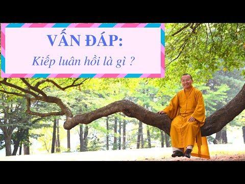 Vấn đáp: Kiếp luân hồi, để hạnh phúc trong cuộc sống hiện đại (21/09/2011) Thích Nhật Từ