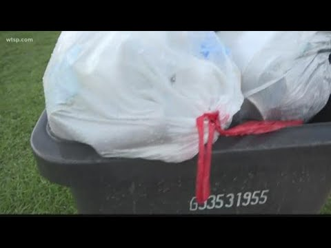 PM Tampa Bay with Ryan Gorman - Hillsborough County Looks to Change Trash Pickup From Twice to Once a Week